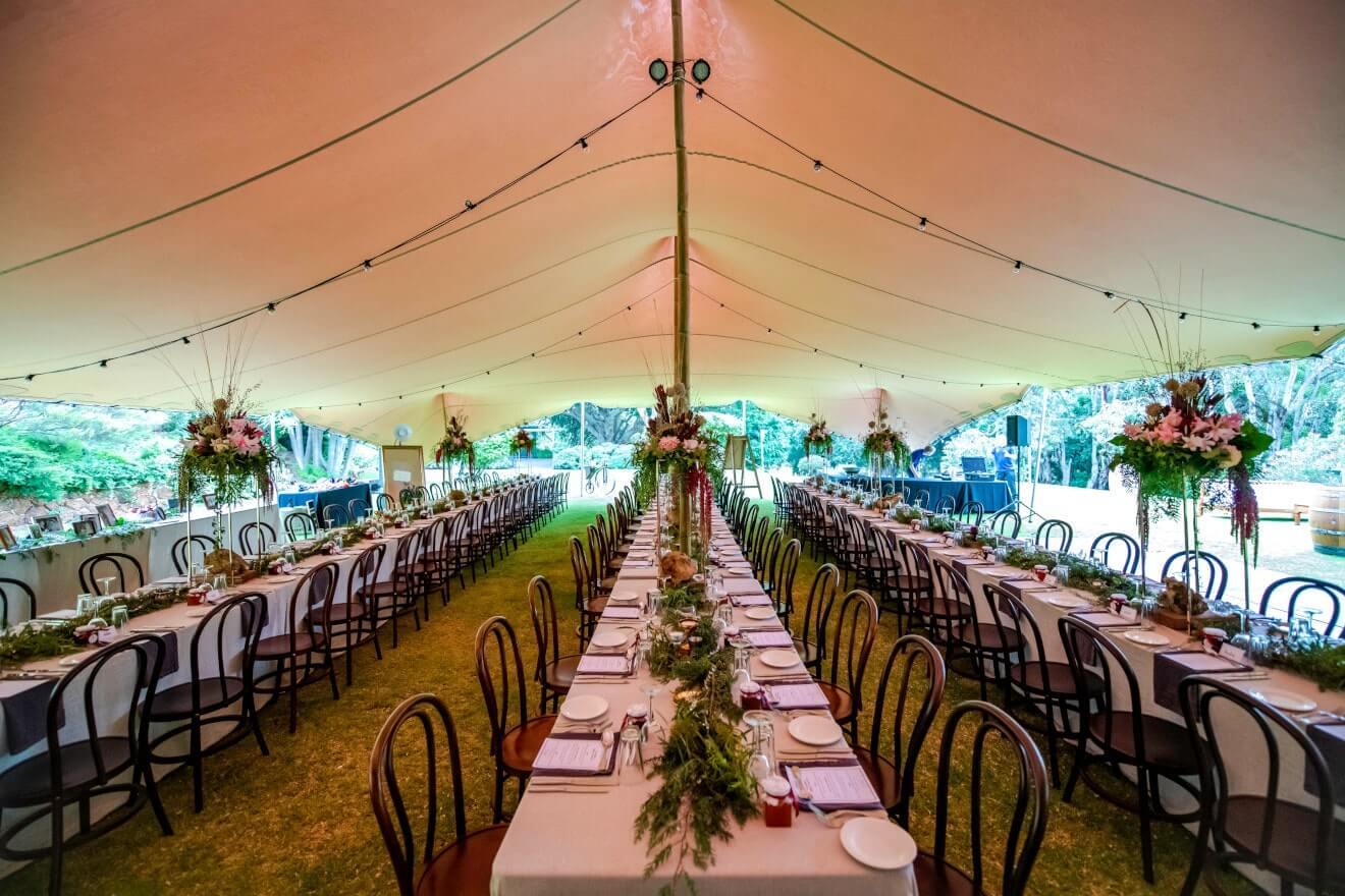 namiot stretch oświetlony girlandami żarówkowymi